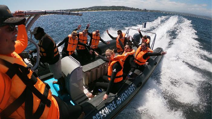 Seal viewing trips plettenberg bay